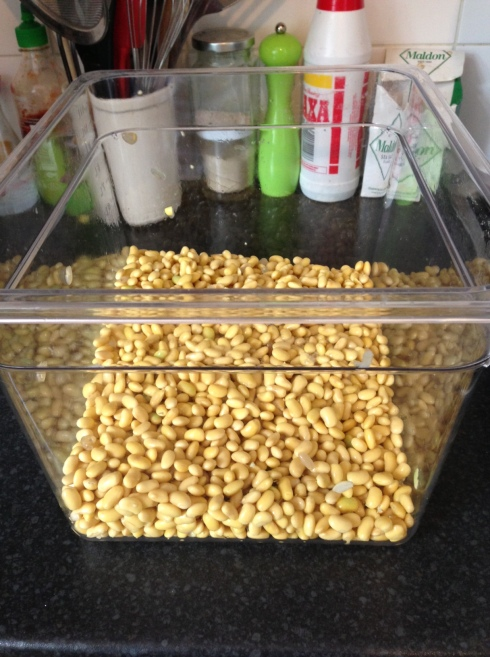 This is actually 1kg worth of soaked beans.